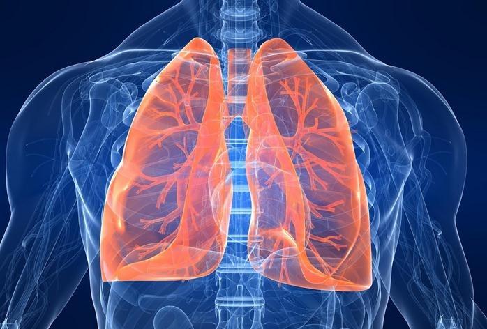 funciones-pulmones.jpg